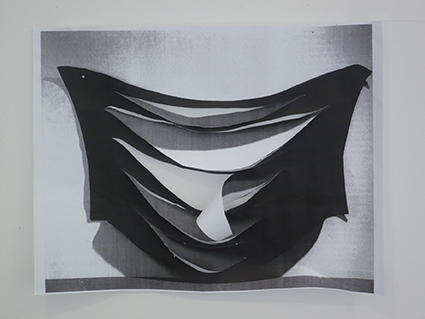 Sans titre, 2011 dimensions variables, impression noir et blanc sur papier