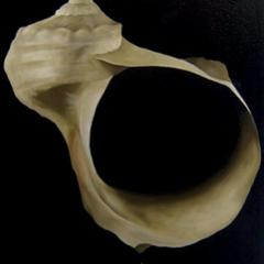 Sans titre, 2009, huile sur toile, 115 x 180 cm