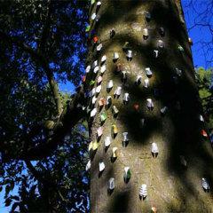 Dispersion de cigales, au château de Lauris sur le tronc des arbres Papier, matériaux divers, supports métal, 66 x 32 x 20 mm chaque, 2007
