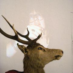 La chambre du cerf, 2010 Détail, vidéo, cerf naturalisé, verre, whisky