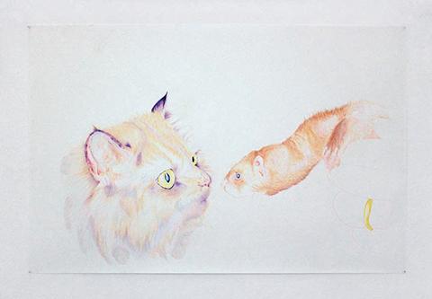 Fidèles castrés / 2008 / crayons de couleurs sur papier / 100 x 150 cm