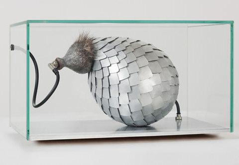 Appeau des cuirassés, 2010 Verre, résine peinte, aluminium, acier galvanisé, poils, câblages et connexions. 35 x 22 x 20 cm Collection privée Photographie Jean-Christophe Lett